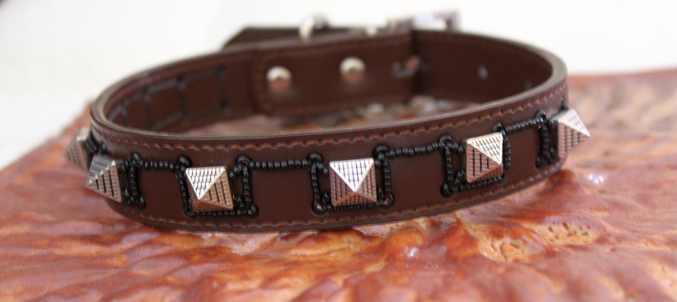 Spike - Dog Collar